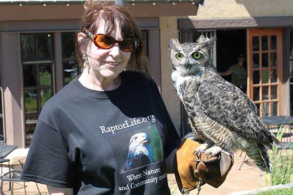 Horned Owl Conservation